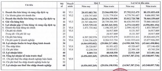 Halico: 6 tháng đầu năm 2020 báo lỗ 15 tỷ đồng - Ảnh 2.