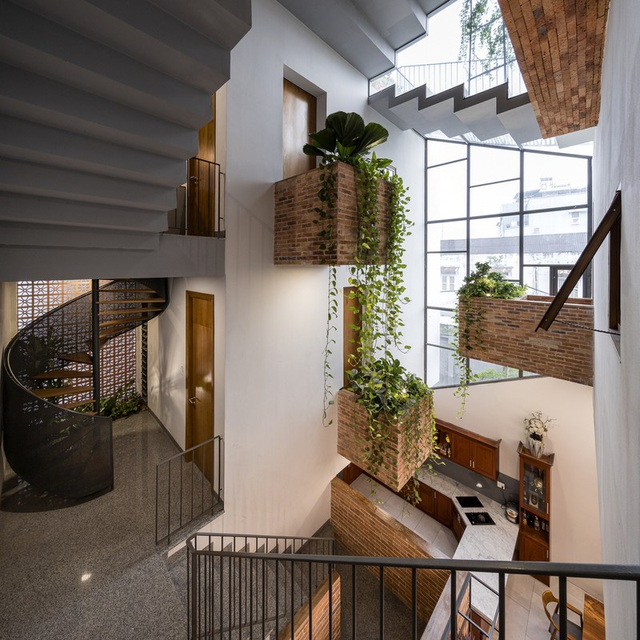 Nhờ có sân thượng trồng cây mà nhà phố xanh y như nhà vườn - Ảnh 5.