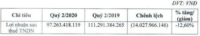 Cen Land báo lãi 97 tỷ đồng trong quý 2/2020, mở rộng hoạt động kinh doanh hậu Covid-19 - Ảnh 2.