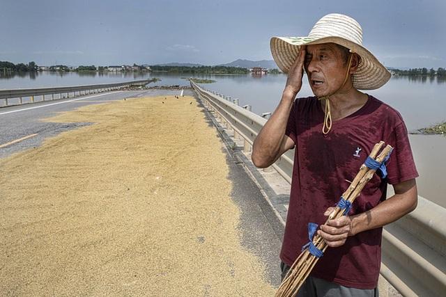COVID-19 vừa ngớt, lũ lụt lại tấn công; người sống gần hồ Bà Dương (TQ) bức xúc vì con đê đậu phụ - Ảnh 4.