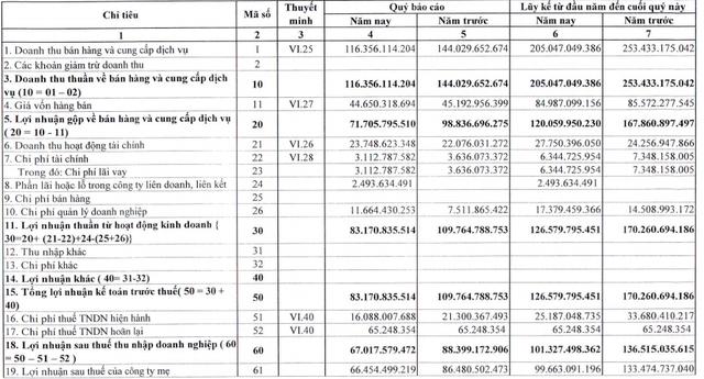 Thủy điện Thác Mơ (TMP) lãi hơn trăm tỷ đồng trong 6 tháng đầu năm 2020 - Ảnh 1.