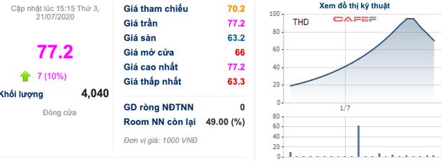 Thaiholdings (THD): Cổ phiếu tăng nóng trước thềm tăng vốn, lợi nhuận quý 2/2020 lại sụt giảm 78% xuống còn 4 tỷ đồng - Ảnh 3.