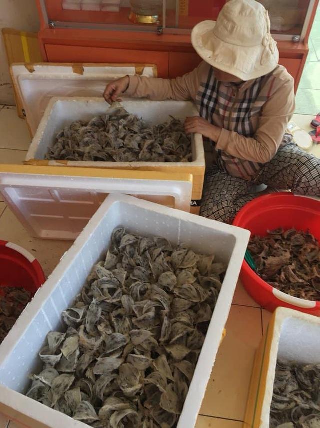Giá yến sào ở Tiền Giang giảm mạnh, người nuôi chậm thu hồi vốn - Ảnh 1.