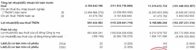 Yeah1 báo lãi ròng nửa đầu năm đạt 6 tỷ, thực hiện chưa đến 5% kế hoạch 2020 - Ảnh 3.