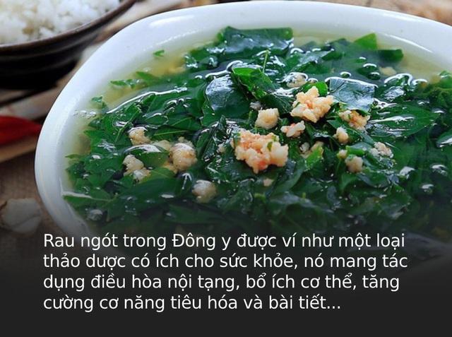 Là thảo dược quý trong Đông y nhưng có 3 nhóm người tuyệt đối không được ăn rau ngót vì sẽ gây hại nghiêm trọng cho sức khỏe - Ảnh 1.