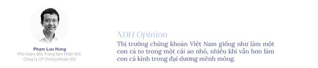 20 năm chứng khoán Việt Nam: Dang dở kỳ vọng nâng hạng thị trường - Ảnh 2.