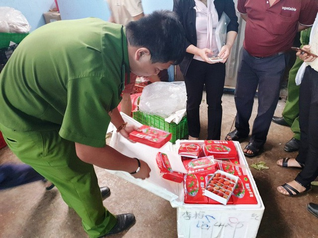 Bắt giữ 3 xe tải chở đầy dâu tây Trung Quốc đưa lên Đà Lạt - Ảnh 5.