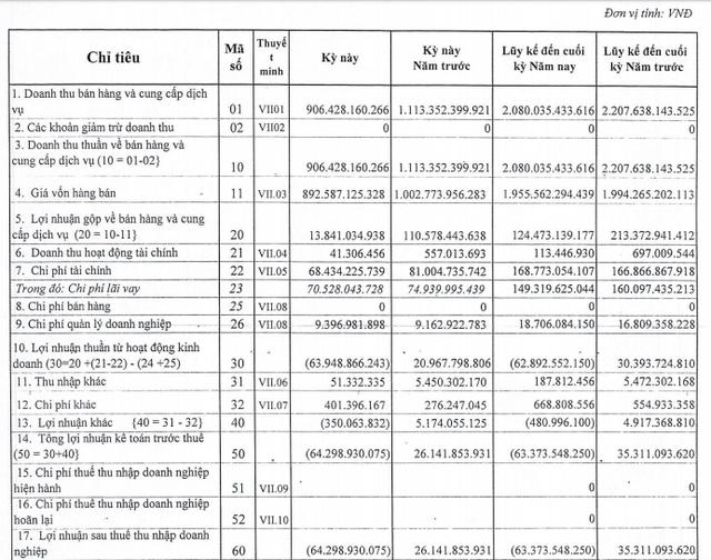 Nhiệt điện Cẩm Phả (NCP) lỗ 64 tỷ đồng trong quý 2, nâng tổng lỗ lũy kế lên trên 1.100 tỷ đồng - Ảnh 1.