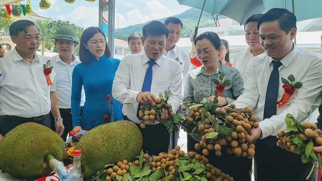 Gần 30 tấn nhãn huyện Sông Mã xuất khẩu chính ngạch sang Trung Quốc - Ảnh 2.
