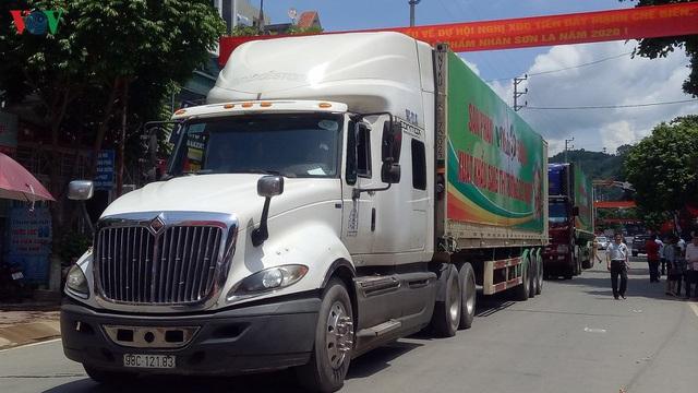 Gần 30 tấn nhãn huyện Sông Mã xuất khẩu chính ngạch sang Trung Quốc - Ảnh 3.