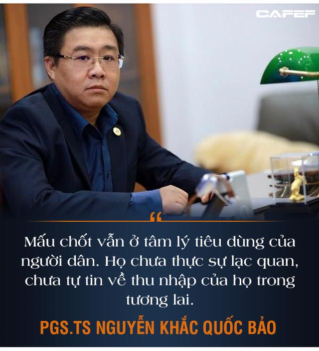 PGS.TS Nguyễn Khắc Quốc Bảo: Điểm nhạy cảm của bom tấn kích thích tăng trưởng - Ảnh 6.