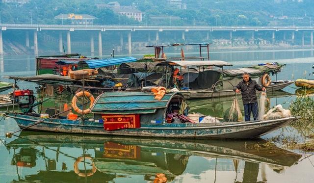 Khiến hàng vạn lao động bơ vơ, nỗ lực cứu sông Dương Tử đầy tham vọng của TQ liệu có hiệu quả? - Ảnh 1.