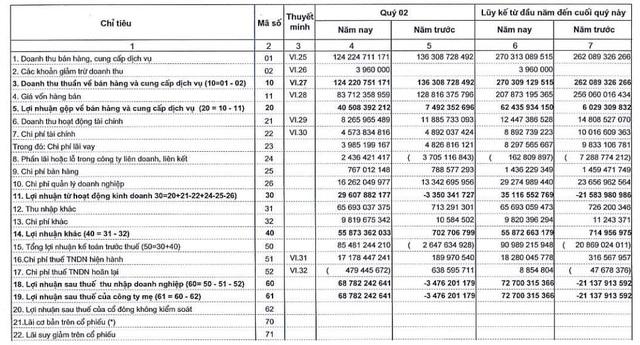 VIPCO (VIP):Quý 2 lãi 69 tỷ đồng – cao nhất trong lịch sử hoạt động - Ảnh 1.