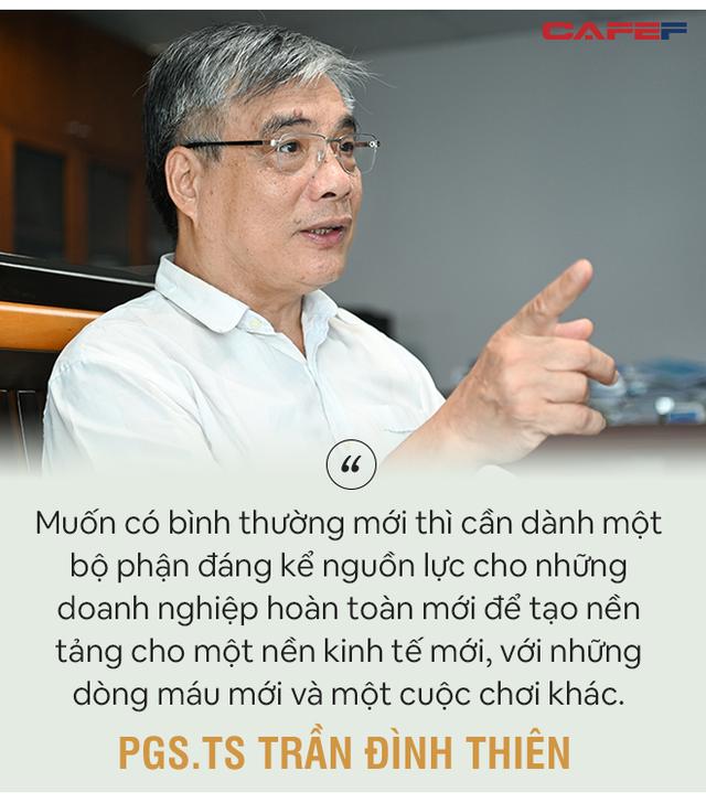 PGS. TS Trần Đình Thiên: Phải cứu doanh nghiệp giúp nền kinh tế đứng dậy được chứ không phải để tất cả cùng thoi thóp! - Ảnh 9.