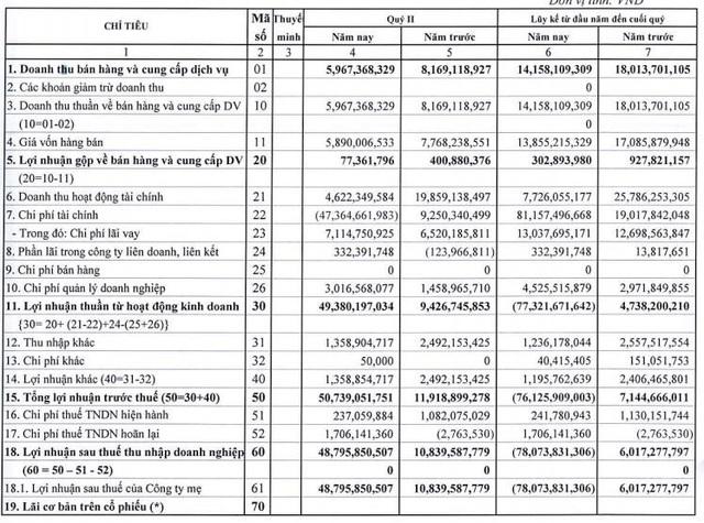 Quý 2, MHC báo lãi 49 tỷ đồng, cao gấp hơn 4 lần cùng kỳ - Ảnh 1.