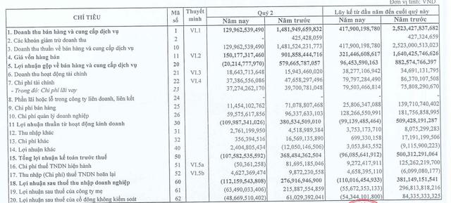 CEO Group ghi nhận lỗ sau thuế 112 tỷ đồng trong quý 2/2020 - Ảnh 2.