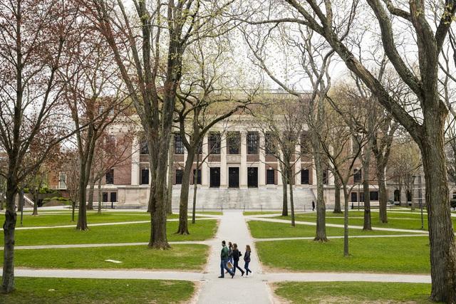 Sinh viên nước ngoài sẽ bị buộc phải rời khỏi Mỹ nếu chỉ học online - Ảnh 1.