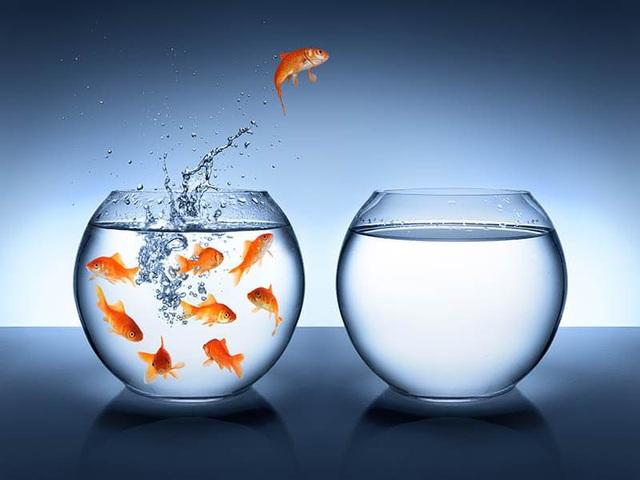 Không phải năng lực, sự chăm chỉ hay tính toán khôn ngoan, kỹ năng mềm này là thứ nhà tuyển dụng nào cũng tìm kiếm! - Ảnh 1.
