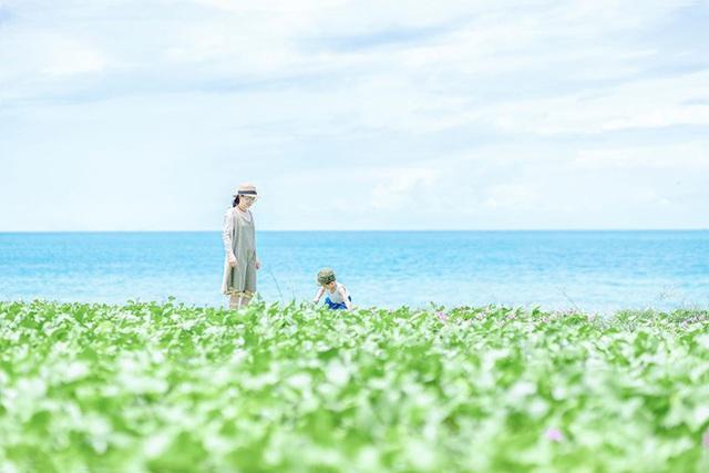 Không tin vào mắt mình đây là Bình Thuận qua bộ ảnh du lịch của gia đình này, xem xong chỉ muốn xách balo lên và đi ngay! - Ảnh 9.