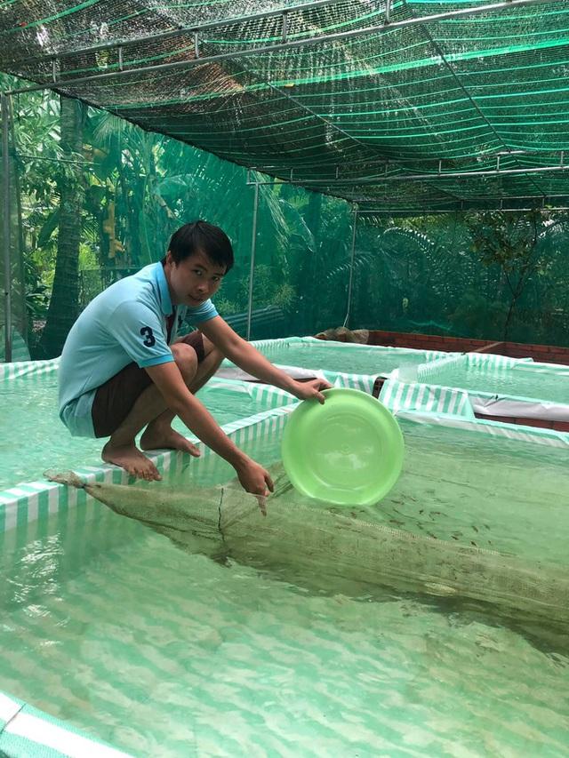 Nuôi hàng trăm bể cá, chàng trai Bến Tre trở thành triệu phú, kiếm 50 triệu đồng mỗi tháng - Ảnh 1.