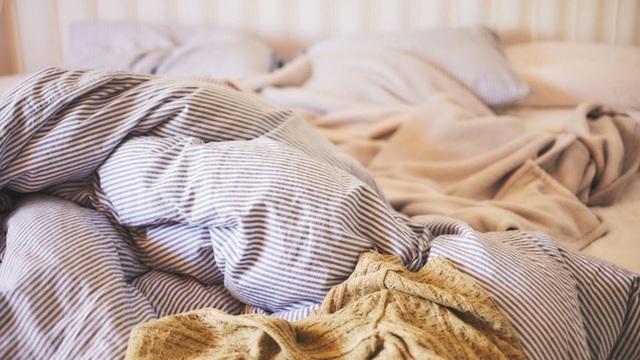 1 kg da chết, hàng trăm nghìn ve bụi: Hiểm họa không ngờ ẩn náu trên giường ngủ và cách tiêu diệt - Ảnh 1.