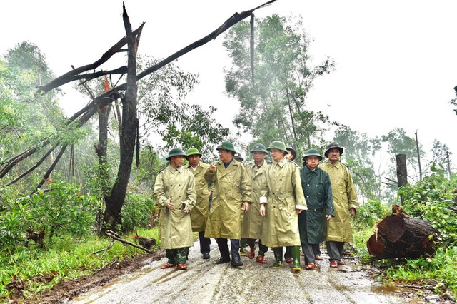 40 công nhân, chuyên gia thủy điện Rào Trăng 3 di chuyển bằng đường rừng đến Rào Trăng 4  - Ảnh 1.