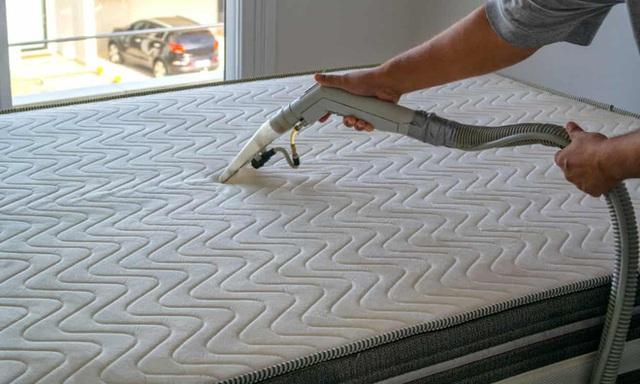 1 kg da chết, hàng trăm nghìn ve bụi: Hiểm họa không ngờ ẩn náu trên giường ngủ và cách tiêu diệt - Ảnh 5.