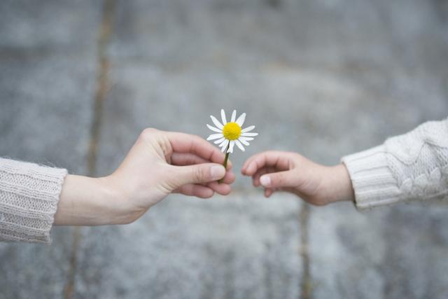 Thử thách 10 ngày hạnh phúc để hiểu rằng là chính mình hạnh phúc biết bao: Ai rồi cũng sẽ rời đi, càng sợ hãi, né tránh, cuộc đời càng nhiều hối tiếc... - Ảnh 3.