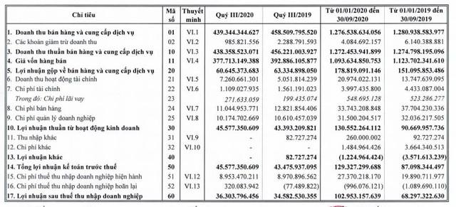 Bao bì nhựa Tân Tiến (TTP): 9 tháng lãi 103 tỷ đồng tăng 51% so với cùng kỳ 2019 - Ảnh 1.