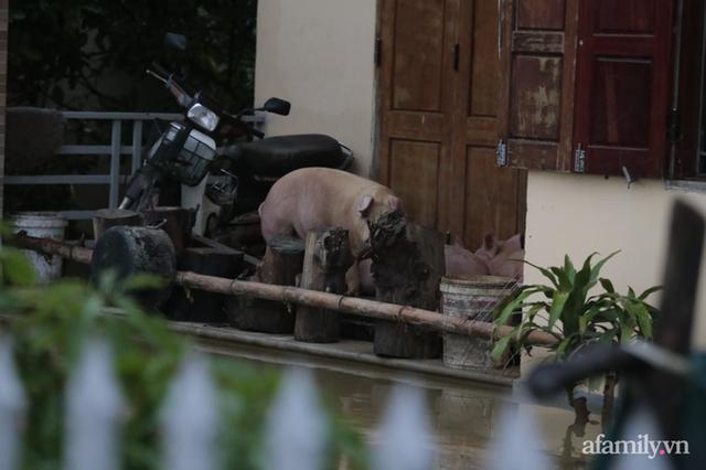 Theo chân đoàn cứu trợ đạp nước dữ vào tâm lũ Quảng Bình tiếp tế cho người dân bị cô lập: Bao nhiêu vất vả bấy nhiêu tình! - Ảnh 16.