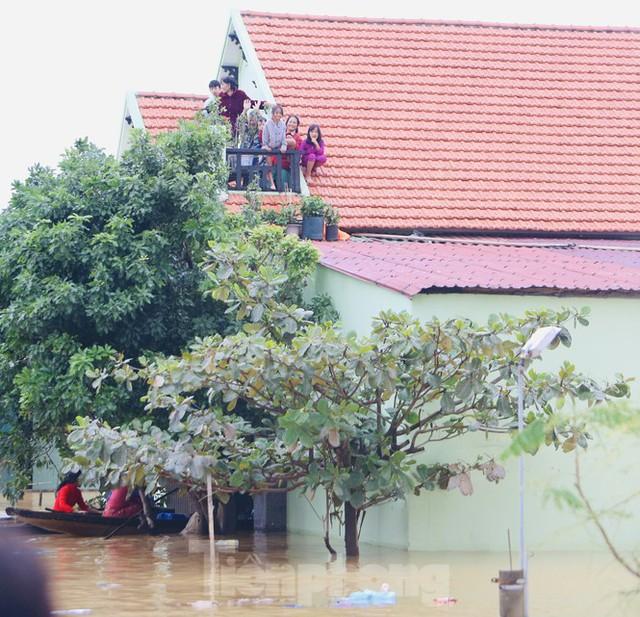 Sống trên nóc nhà, người dân Quảng Bình khắc khoải chờ lũ rút - Ảnh 2.