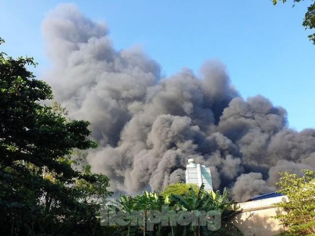 Công ty xử lý môi trường ở Bình Dương chìm trong biển lửa - Ảnh 3.