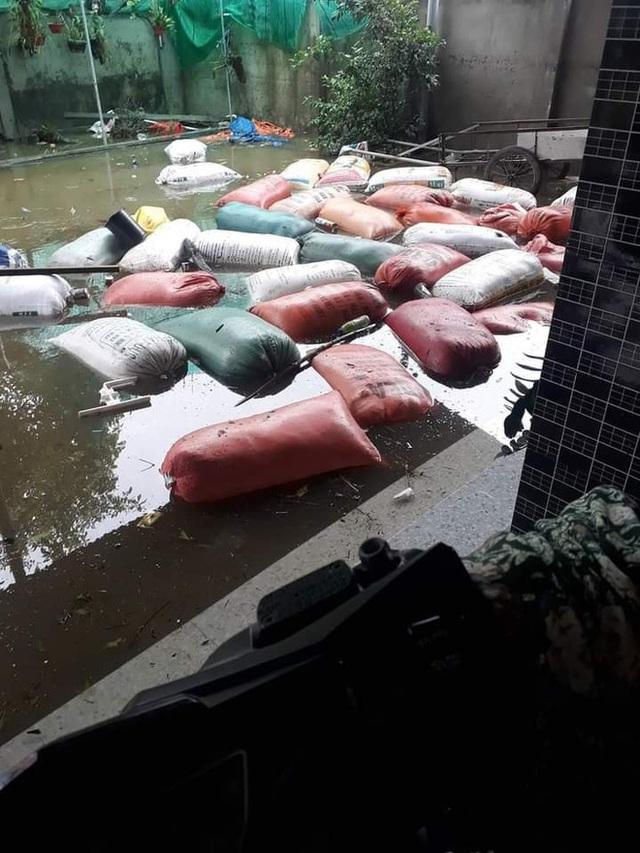 Khung cảnh nhà cửa tan hoang sau trận đại hồng thuỷ ở Quảng Bình: Tài sản bị ngâm nước nhầy nhụa bùn đất, thóc mọc mầm, vật nuôi chết hàng loạt - Ảnh 11.