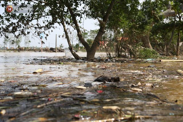 Ảnh: Người dân Quảng Bình bì bõm bơi trong biển rác sau trận lũ lịch sử, nguy cơ lây nhiễm bệnh tật - Ảnh 19.