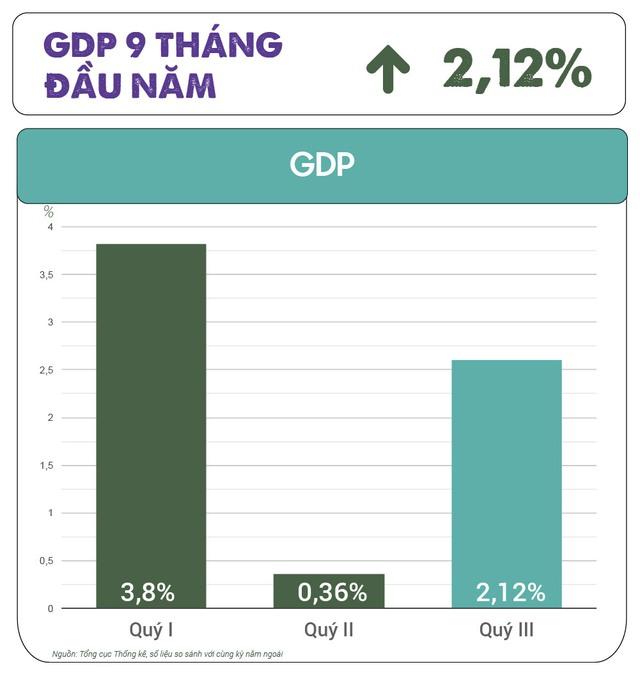 Ông Nguyễn Đình Cung: Nâng cấp mức độ phát triển kinh tế thị trường, tăng trưởng 9-10% không phải là thách thức với Việt Nam - Ảnh 1.