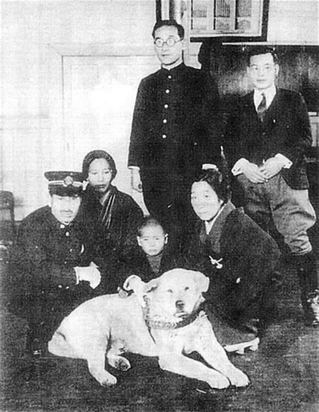 Những bức ảnh hiếm hoi về Hachikō - biểu tượng trung thành của người Nhật khiến người xem cảm tưởng câu chuyện đau lòng ấy đang diễn ra trước mắt - Ảnh 3.