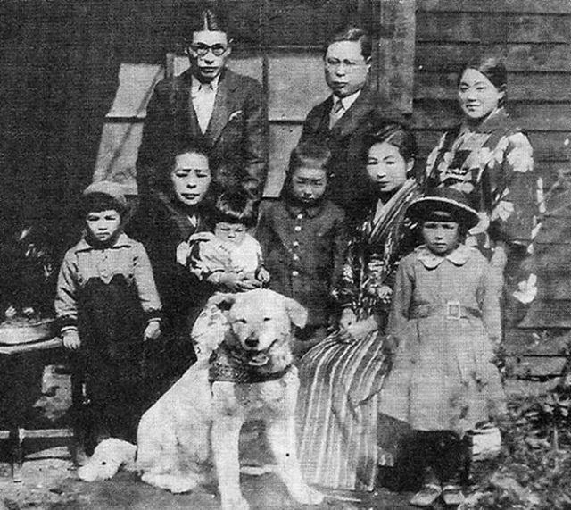 Những bức ảnh hiếm hoi về Hachikō - biểu tượng trung thành của người Nhật khiến người xem cảm tưởng câu chuyện đau lòng ấy đang diễn ra trước mắt - Ảnh 4.