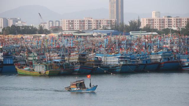 Ngư dân Đà Nẵng hối hả thuê xe cẩu đưa thuyền đi tránh bão số 9 - Ảnh 2.