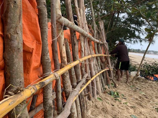 Người dân Quảng Ngãi hối hả ra biển lấy cát chống bão số 9 - Ảnh 9.