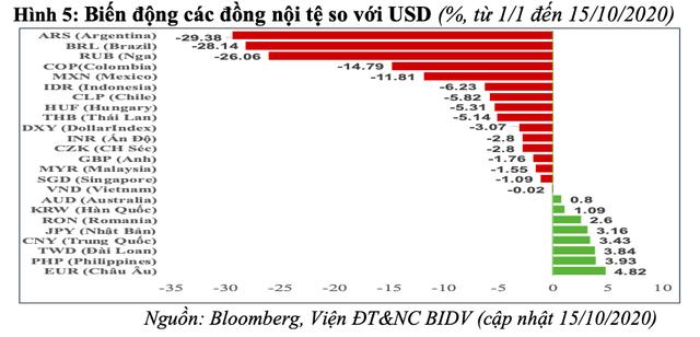 Rủi ro bất ổn tài chính toàn cầu - sức chống chịu của Việt Nam và kiến nghị - Ảnh 5.