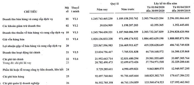 CMC Group lãi quý 2 đạt 66 tỷ đồng, tăng trưởng so với cùng kỳ 2019 - Ảnh 1.