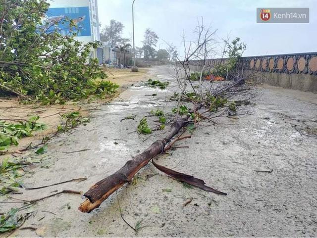 Những hình ảnh đầu tiên tại đảo Lý Sơn khi bão số 9 đi qua: Mọi thứ đều tan hoang, người dân thất thần bên đống đổ nát - Ảnh 14.