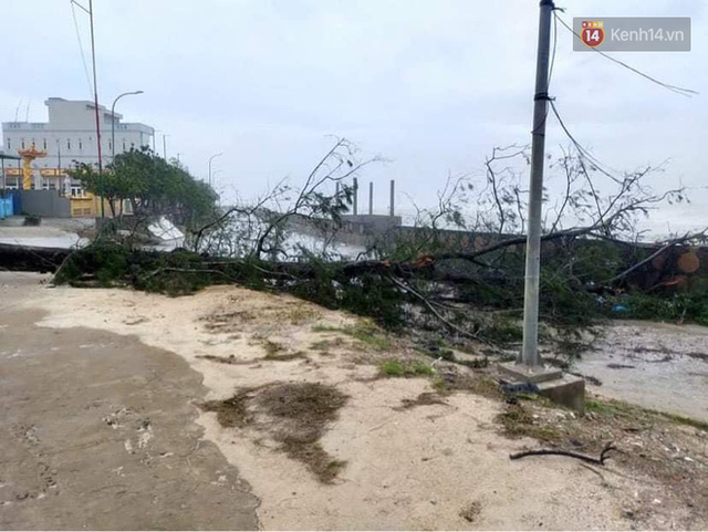 Những hình ảnh đầu tiên tại đảo Lý Sơn khi bão số 9 đi qua: Mọi thứ đều tan hoang, người dân thất thần bên đống đổ nát - Ảnh 15.