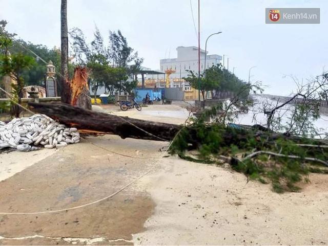 Những hình ảnh đầu tiên tại đảo Lý Sơn khi bão số 9 đi qua: Mọi thứ đều tan hoang, người dân thất thần bên đống đổ nát - Ảnh 16.