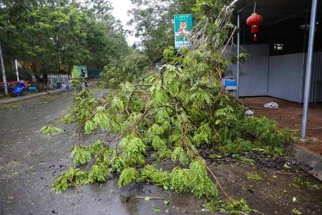 Đường phố Quảng Ngãi xơ xác, nhà dân tốc mái trước khi bão số 9 đổ bộ - Ảnh 5.