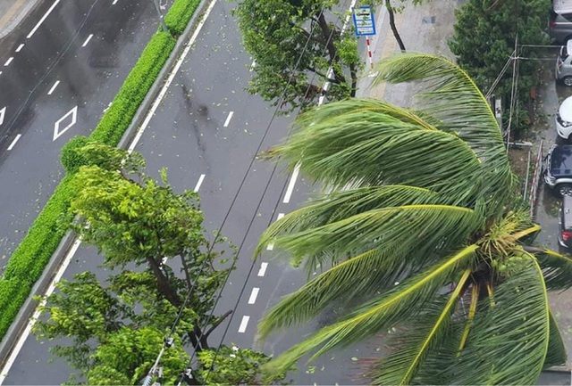 Đường phố Quảng Ngãi xơ xác, nhà dân tốc mái trước khi bão số 9 đổ bộ - Ảnh 8.