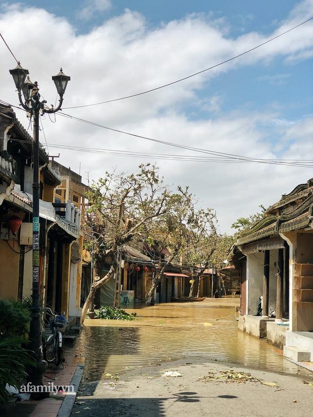 Hội An tan hoang sau bão số 9, những rặng hoa giấy rực rỡ ngày thường nay bỗng hóa xác xơ, nước sông Hoài dâng lên ngập cả nhiều tuyến đường trung tâm phố cổ - Ảnh 13.