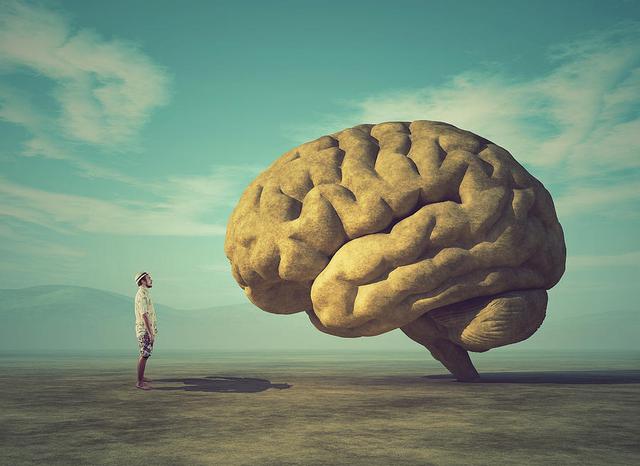 """10 thói quen giúp bạn """"cải lão hoàn đồng"""" não bộ: Luyện tập hàng ngày để kéo dài sự trẻ trung, minh mẫn cho trí tuệ của bạn - Ảnh 1."""