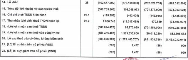 HAGL: Quý 3/2020 chính thức không còn phát sinh chi phí điều chỉnh vườn cây, lũy kế 9 tháng vẫn còn lỗ ròng 622 tỷ đồng - Ảnh 2.