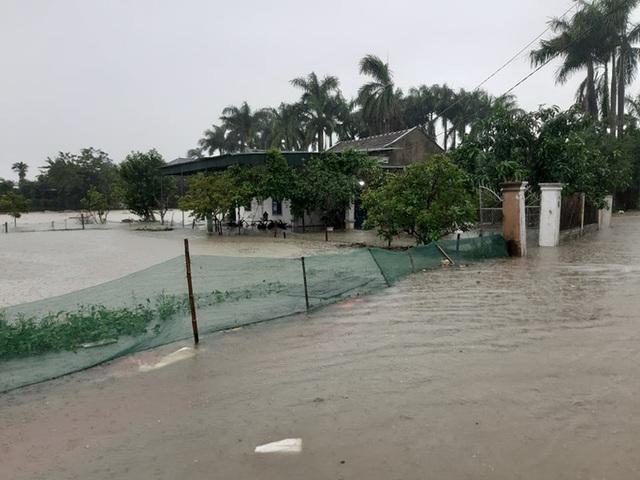 Mưa lớn, thủy điện đồng loạt xả lũ, hàng ngàn nhà dân ở Nghệ An bị ngập sâu  - Ảnh 19.
